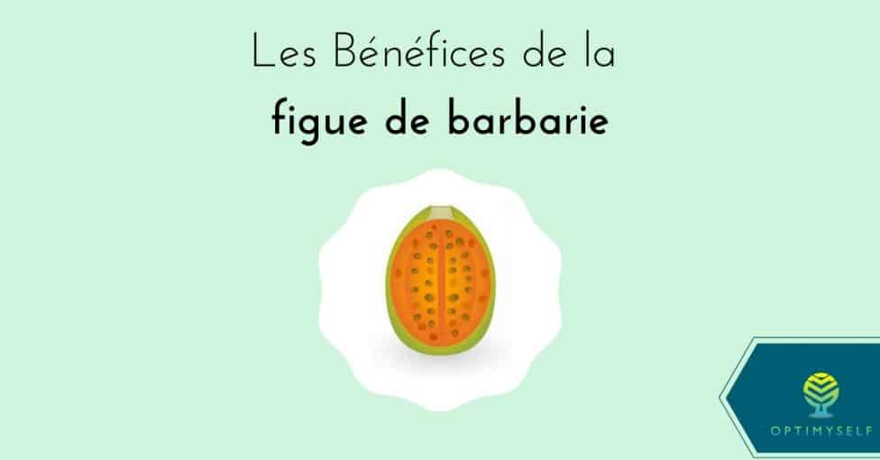 bénéfices figue de barbarie
